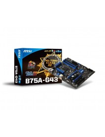 Main Board B75A-G43 GAMING
